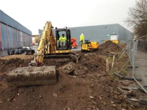 Wickes Japanese Knotweed Excavation